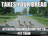 bread takers